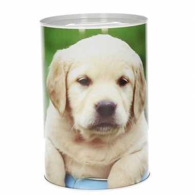Grote puppy spaarpot type
