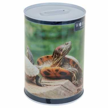Grote schildpad spaarpot