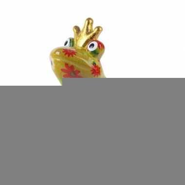 Grote spaarpot kikker kroontje geel type