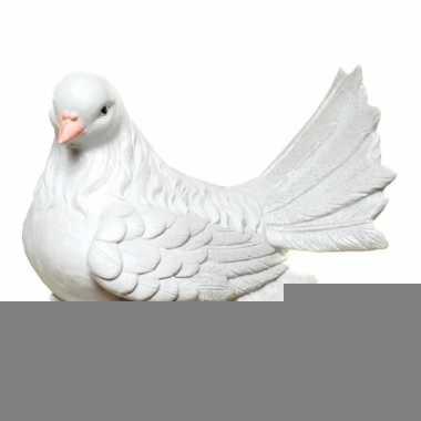 Grote  Spaarpot witte duif