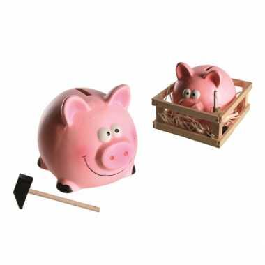 Grote  Spaarvarken hamer kistje spaarpot