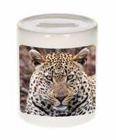 Grote dieren foto spaarpot jaguar jaguars spaarpotten jongens meisjes